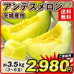 メロン 茨城県産他 アンデスメロン 約3.5kg1箱 食品...
