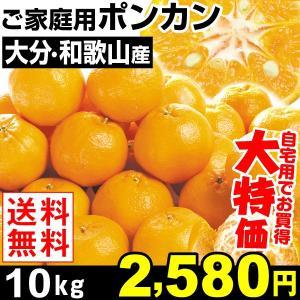みかん 大分・和歌山産 ご家庭用 ポンカン 10kg 1箱 ...