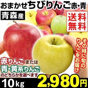 リンゴ【お買得】ご家庭用 青森産 品種おまかせちびりんご 1...