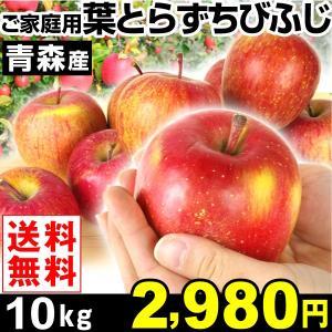 リンゴ 青森産 葉とらず ちびふじ 10kg 1箱 送料無料...