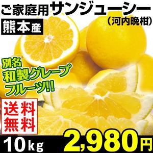 みかん 熊本産 ご家庭用 サンジューシー 10kg1箱 送料...