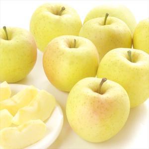 りんご 青森産 ちび星の金貨 ご家庭用 10kg1箱 小玉 ...