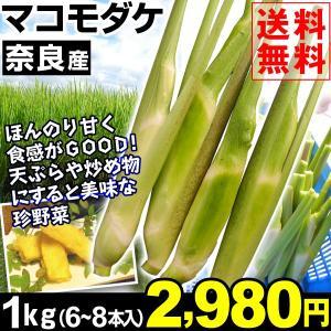 山菜 奈良産 マコモダケ 1kg 1箱 送料無料 【数量限定】まこも マコモタケ 真菰筍 6〜8本 先行販売