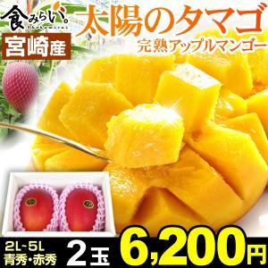 マンゴー 宮崎完熟マンゴー「太陽のタマゴ」 2玉1箱 A〜A...