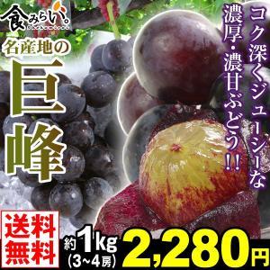 ぶどう 名産地の巨峰 秀品 約1kg1箱 送料無料 3〜4房...