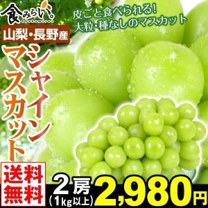 ぶどう 山梨・長野産 シャインマスカット 2房 1kg以上 ...