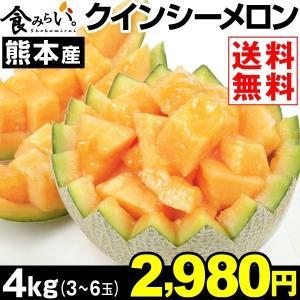 メロン 【超買得】熊本産 クインシーメロン 約4kg 1箱 ...