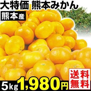 みかん 大特価 熊本産 みかん 5kg1箱 送料無料  食品