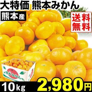 みかん 大特価 熊本産 みかん 10kg1箱 送料無料 食品