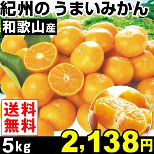 みかん 和歌山産 紀州のうまいみかん 5kg1箱 送料無料 蜜柑 食品 グルメ|seikaokoku