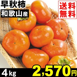 柿 和歌山産 早秋 4kg1組 送料無料 そうしゅう 食品