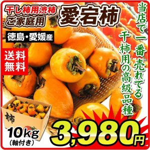 柿 かき  愛宕柿 徳島産「干柿用渋柿」 10kg 果物 軸付き渋柿 食品 国華園|seikaokoku