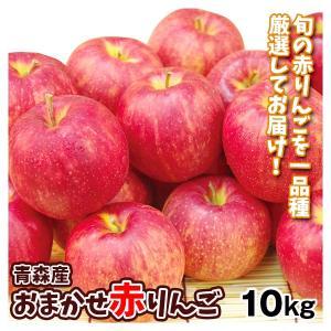 りんご 青森産 お買得 おまかせ赤りんご 10kg ご家庭用 送料無料 食品|seikaokoku
