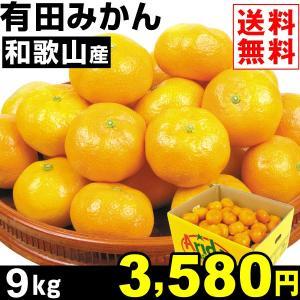 みかん 和歌山産 有田みかん 9kg1箱 送料無料 蜜柑 食品|seikaokoku