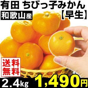 みかん 和歌山産 ちびっ子みかん 【早生】 2.4kg1組 小玉 送料無料 蜜柑 食品|seikaokoku