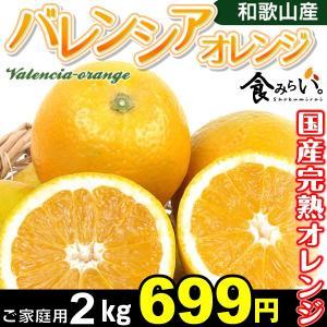 みかん 和歌山産 国産バレンシアオレンジ 2kg 1組 ご家庭用 樹上完熟 国産オレンジ 紀南|seikaokoku