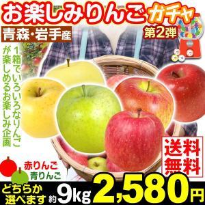 リンゴ 青森・岩手産 お楽しみ りんごガチャ 約9kg 1箱 送料無料 赤りんご/青りんご ご家庭用 品種おまかせ★1箱に色々なりんごが入ります★