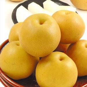 梨 熊本産 豊水梨(4kg)13〜24玉 ほうすい なし 赤梨 和梨 果物 フルーツ 国華園|seikaokoku