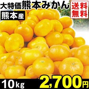 みかん 大特価 熊本産 みかん 10kg1箱 送料無料 ご家庭用 食品 グルメ|seikaokoku