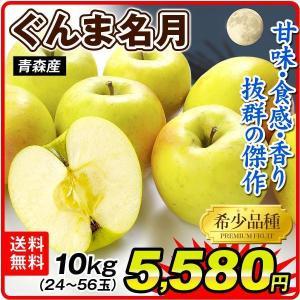 りんご 大特価 青森産 ぐんま名月 10kg ご家庭用 送料無料 食品|seikaokoku