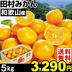 みかん 和歌山産 田村みかん 5kg1組 送料無料 ご家庭用 食品 グルメ|seikaokoku