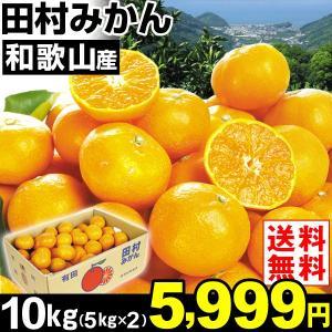 みかん 和歌山産 田村みかん 10kg1組 送料無料 ご家庭用 食品 グルメ|seikaokoku