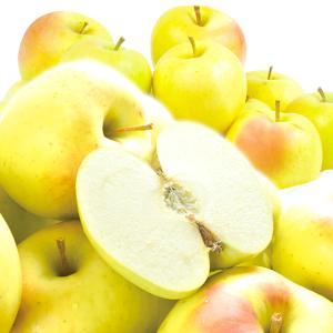 ●商品情報      香り高く甘味強い注目のジューシーりんご。 青りんごの王様「王林」を親に持つこの...