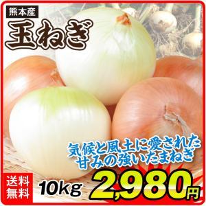 たまねぎ 大特価 熊本産 たまねぎ 10kg 1組 野菜 国華園|seikaokoku