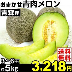 メロン 約5kg 青森県産 おまかせ青肉メロン ご家庭用 品種おまかせ 果物 食品|seikaokoku