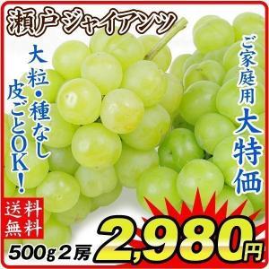 ぶどう 瀬戸ジャイアンツ 2房 岡山県産他 大特価 葡萄 ブドウ 数量限定 食品 国華園