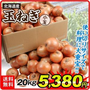 たまねぎ 北海道産 小玉たまねぎ 20kg 1箱 送料無料 食品 国華園|seikaokoku