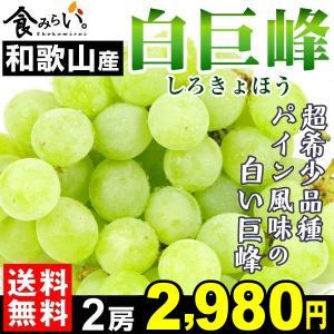 商品情報 巨峰の突然変異品種で、和歌山県の森園でのみ栽培されている超希少品種! 巨峰の味を保ちつつ、...