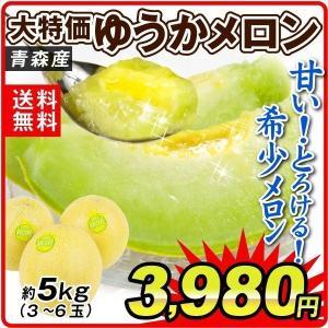 メロン 約5kg 青森県産 ご家庭用 ゆうかメロン 青肉メロン 希少 冷蔵便 果物 食品|seikaokoku