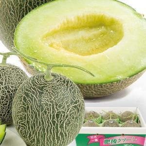 メロン 熊本産 お買得 肥後グリーン 約8kg ご家庭用 メロン 果物 食品|seikaokoku
