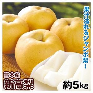 梨 熊本産 新高梨(5kg)6〜12玉 にいたか なし 大玉 和梨 果物 フルーツ 国華園|seikaokoku