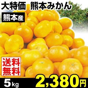 みかん 大特価 熊本産 みかん 5kg 柑橘 食品 seikaokoku