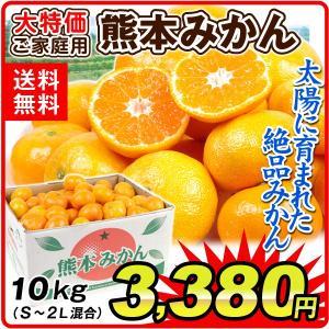 みかん 大特価 熊本産 みかん 10kg 柑橘 食品 seikaokoku