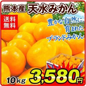 みかん 熊本産 天水みかん 10kg 1箱 送料無料 食品 国華園|seikaokoku