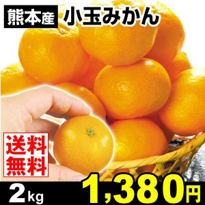 みかん 熊本産 小玉みかん 2kg 柑橘 食品 seikaokoku