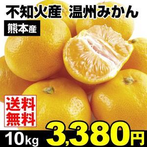 みかん 不知火産 温州みかん 10kg 柑橘 食品 seikaokoku