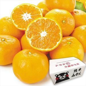 みかん 熊本産 訳あり 肥後の雫 10kg 1組 送料無料 食品 国華園|seikaokoku