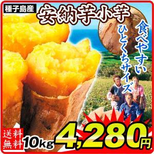 安納芋 種子島産 安納小芋 10kg さつまいも 食品 グルメ|seikaokoku