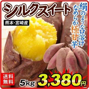 さつまいも 熊本産 ご家庭用 シルクスイート 5kg サツマイモ 薩摩芋 野菜|seikaokoku