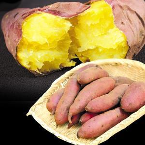 ●商品情報      名前の通り「はるか」に優れた美味しさ!  ●産地 熊本県 ●規格・サイズ S〜...