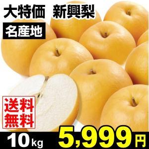 梨 大特価 新興梨 10kg なし 食品 国華園|seikaokoku