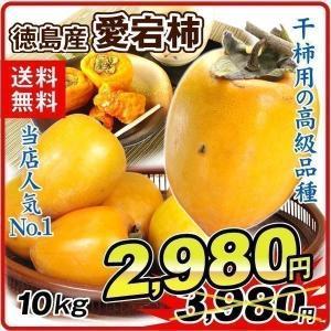 柿 かき 徳島産 愛宕柿 大特価 「干柿用渋柿」 10kg 果物 食品 国華園 seikaokoku