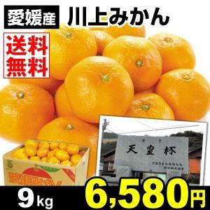 みかん 愛媛産 川上みかん 9kg 柑橘 食品 seikaokoku