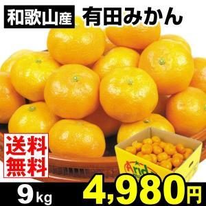 みかん 和歌山産 有田みかん 9kg 柑橘 食品 seikaokoku