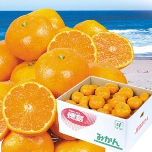 みかん 徳島産みかん 9kg 柑橘 食品 seikaokoku