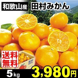 みかん 和歌山産 田村みかん 5kg 柑橘 食品 seikaokoku